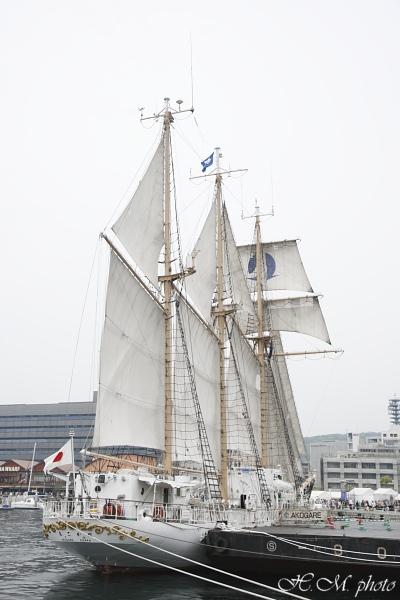 2008_帆船まつり(昼)_10.jpg
