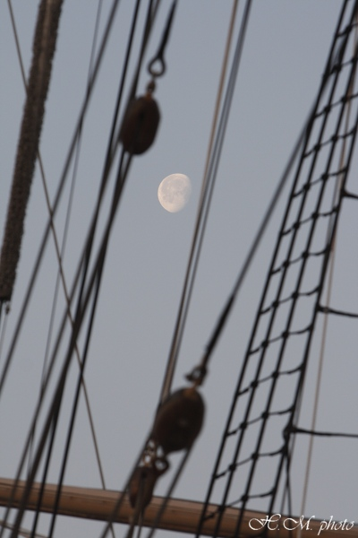 2008_帆船まつり_00.jpg
