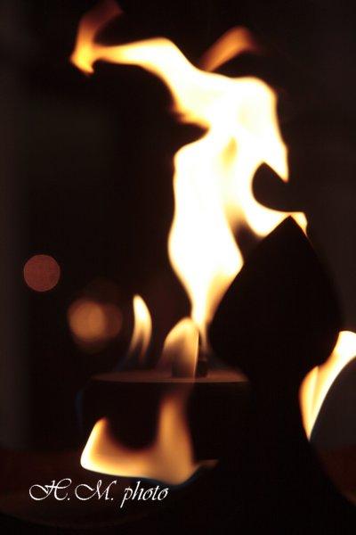 2008_炎のドラゴン_04.jpg