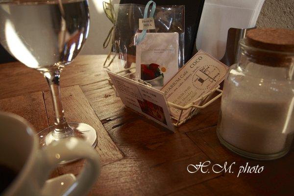 2009_AQUARIUM-cafe COCO_04.jpg