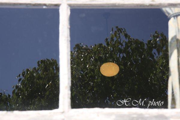 2009_グラバー園の陽光_01.jpg