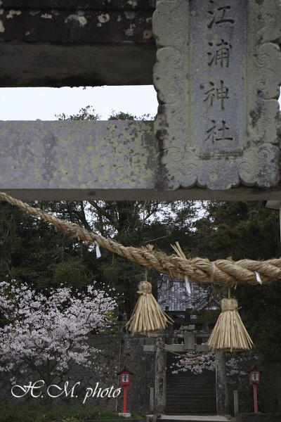 2009_江浦神社_01.jpg