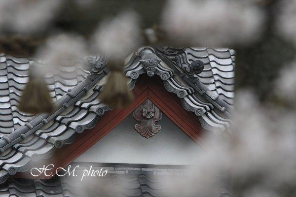 2009_江浦神社_03.jpg