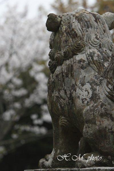 2009_江浦神社_05.jpg