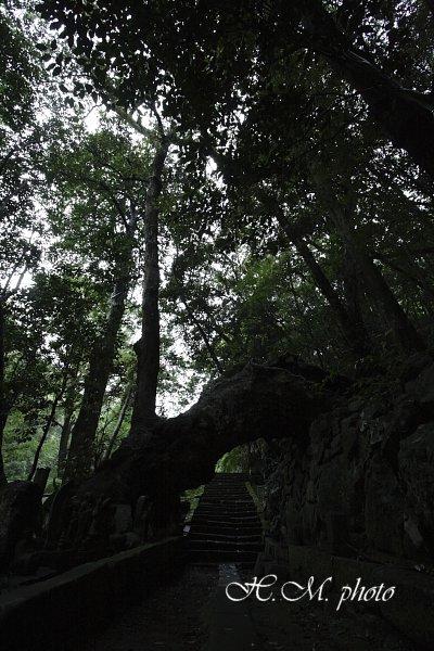 2009_滝の観音2_01.jpg