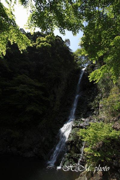 2009_滝の観音_07.jpg