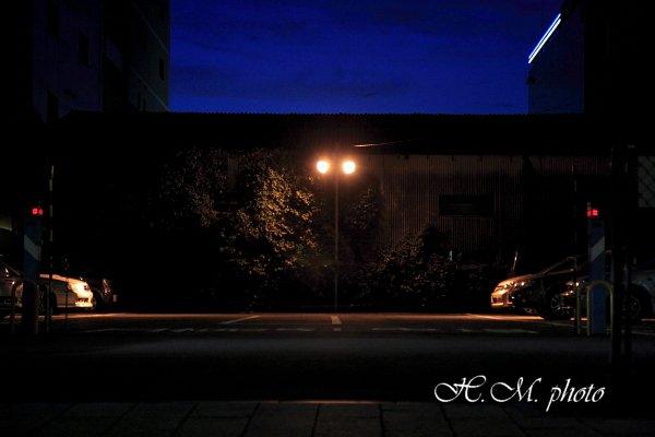 2010_夜に徘徊_06.jpg