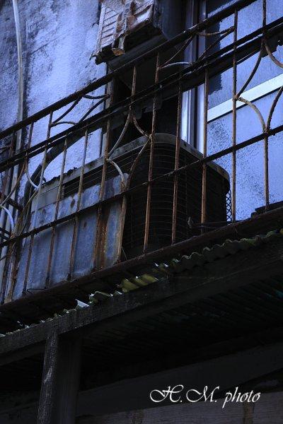 2010_大黒市場_02.jpg