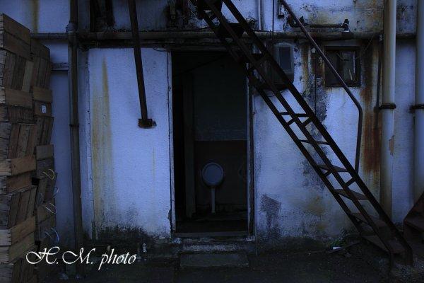 2010_大黒市場_05.jpg