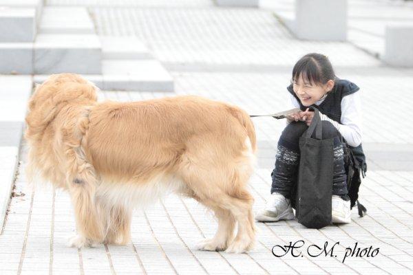 2010_救助_04.jpg