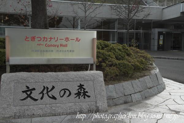 2011_とぎつカナリーホール_01.jpg