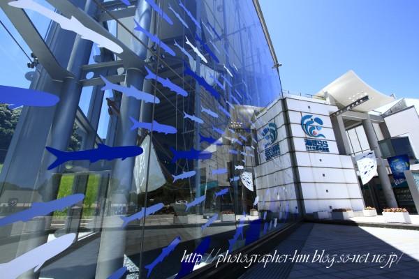 2011_九十九島水族館_海きらら_01.jpg