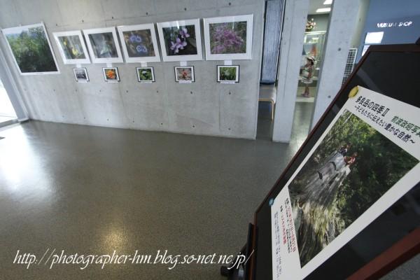 2011_前波政昭写真展_03.jpg