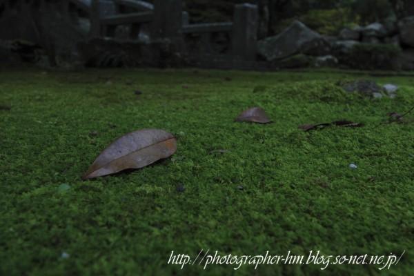 2011_滝の観音_01.jpg