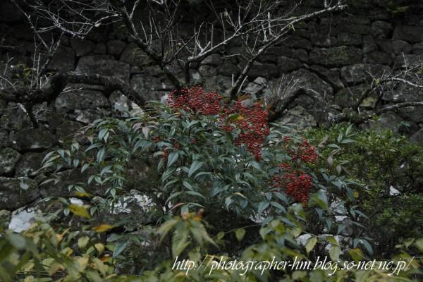 2011_滝の観音_06.jpg