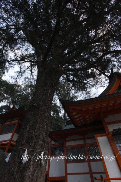 2012_若宮稲荷神社_09.jpg