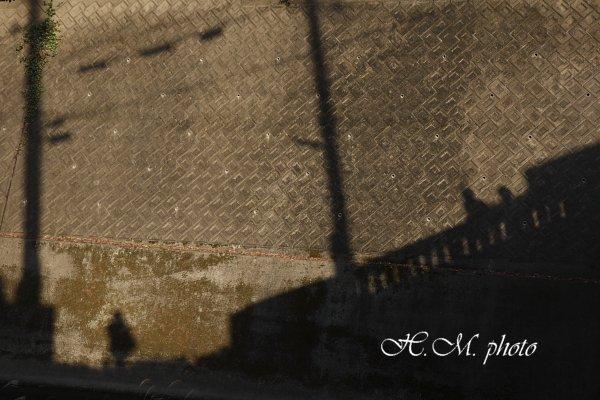 2008_秋_03.jpg