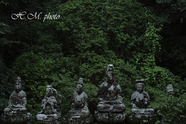 2009_滝の観音2_05.jpg