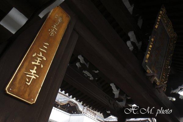 2010_三宝寺_03.jpg