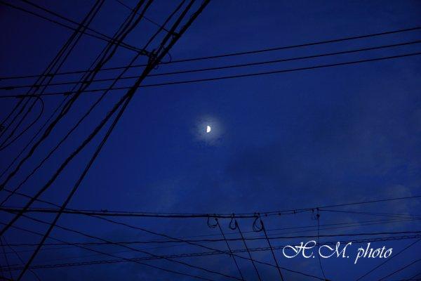 2010_夜に徘徊_02.jpg