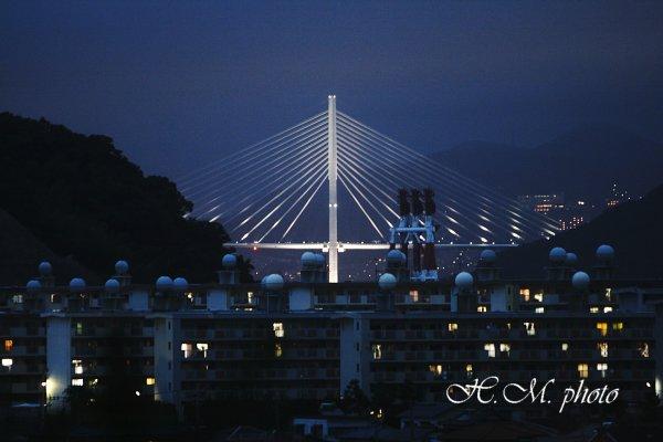 2010_女神大橋の夜_01.jpg