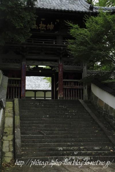 2011_天祐寺_05.jpg