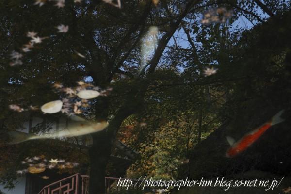 2011_滝の観音_12.jpg