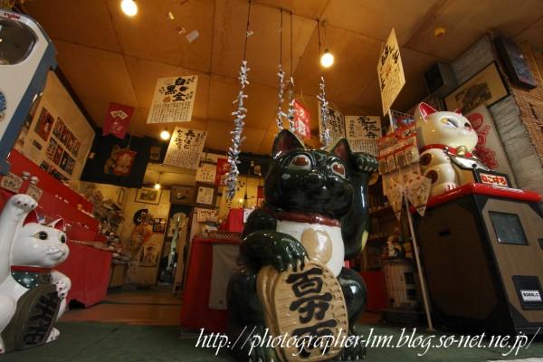2012_サンシャイン中央街_03.jpg