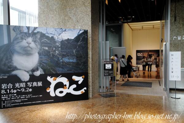 2012_岩合光昭 ねこ写真展_02.jpg