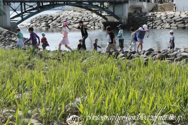 2012_長崎帆船まつり_07.jpg